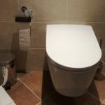douche-wc in nieuwe badkamer